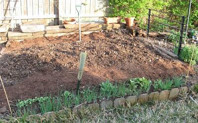 Veg garden ready,annieinaustin