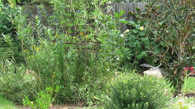 Annieinaustin,layered garden beds