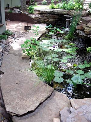 Annieinaustin, long view pond 1