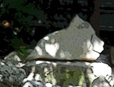 Annieinaustin, pond 9, bear rock