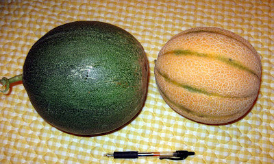 Annieinaustin, mystery melon with tuscan