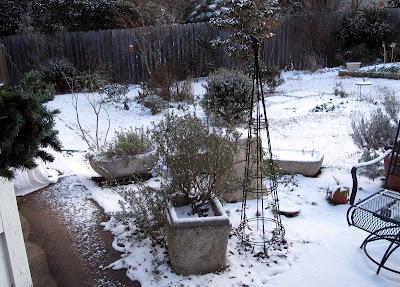 Annieinaustin,2011,02,snowy view