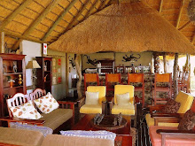 Elephant Valley Lodge ~Chobe ~ Botswana