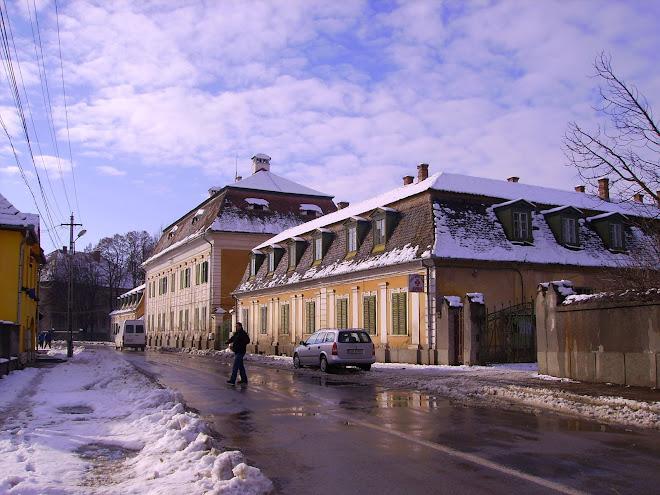 Casa de vacanta din orasul Avrig a familiei Brukenthal