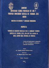 Tesis Maestría de Joselito, Tomo II