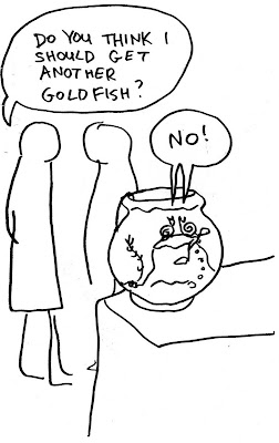 golfish snail cartoon