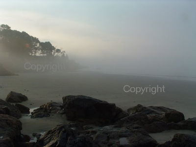 misty morning new england beach coast massachusetts