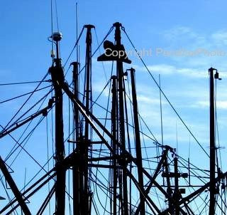 modern photograph black boat masts and blue sky