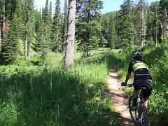 Sweet Single Track - Papoose Creek