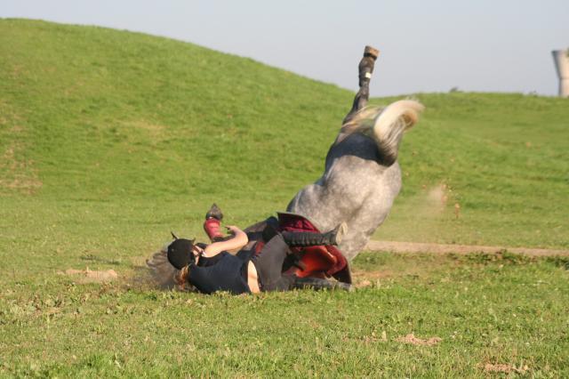 Mes amis les chevaux chute de cheval - Frison qui saute ...