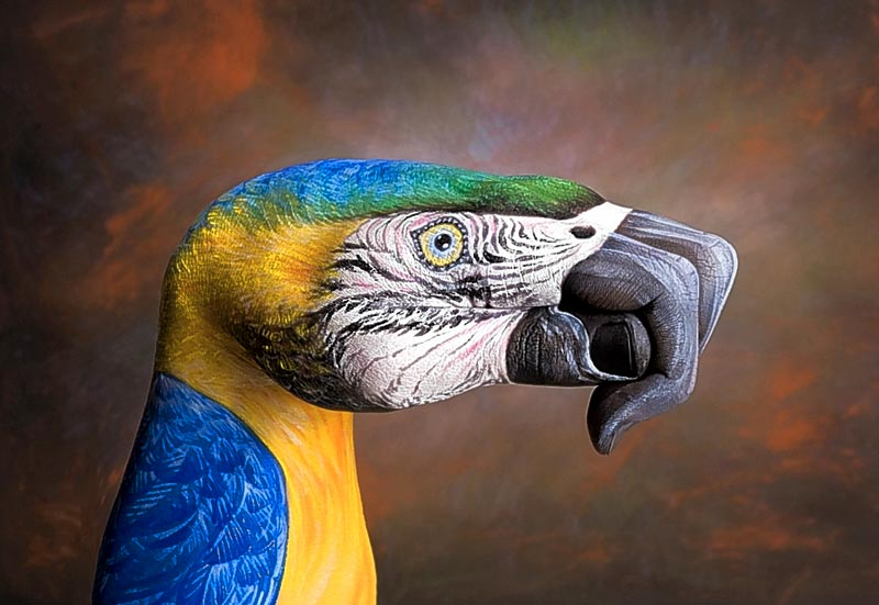 All Graphical: Realistic Hand Paintings (Guido Daniele)