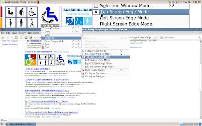 KMagnifier 1.0 (KDE 3.5.10)