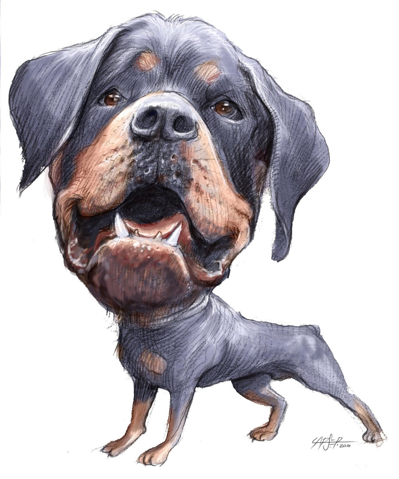 Rottweiler Photos Pictures Rottweilers Page 10 Image | Dog Breeds ...