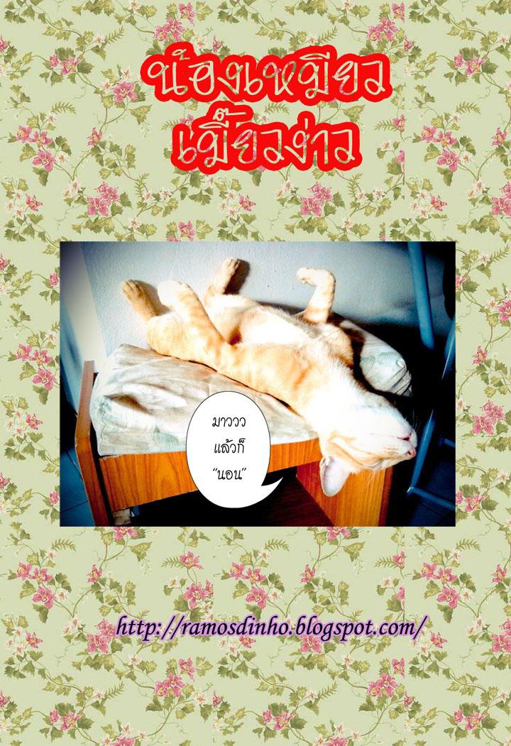 อ่านการ์ตูน Chisweet home 11 ภาพที่ 12