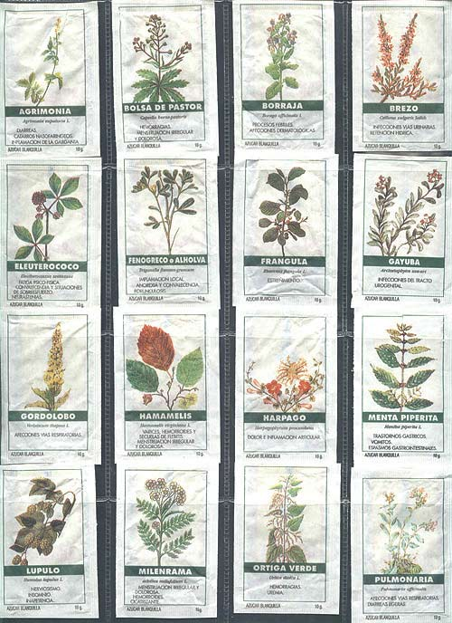 Informaión de plantas