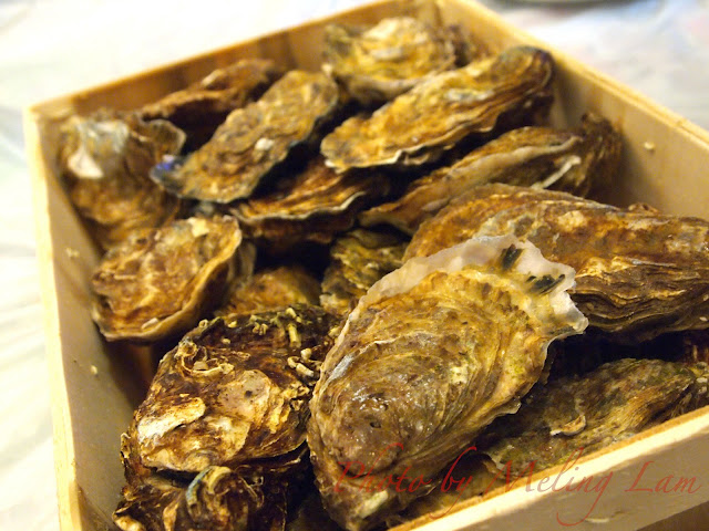 oyster 生蠔 Marennes d'Oleron 法國紛迪加蠔 Fines de Clair no.3 city'super