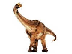 cetiossauro