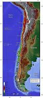 CHILE FÍSICO