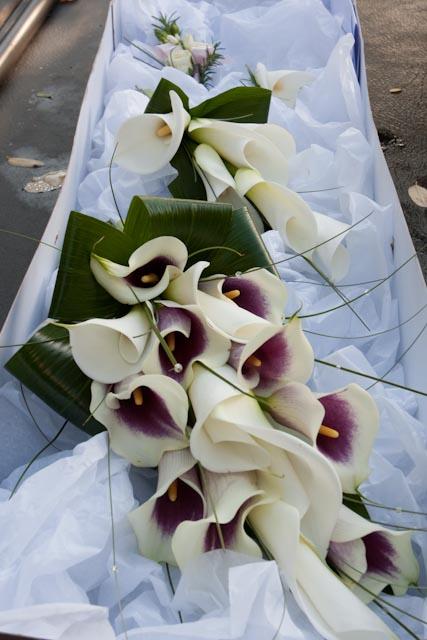 casablanca lily corsage. Casablanca Oriental Lilies