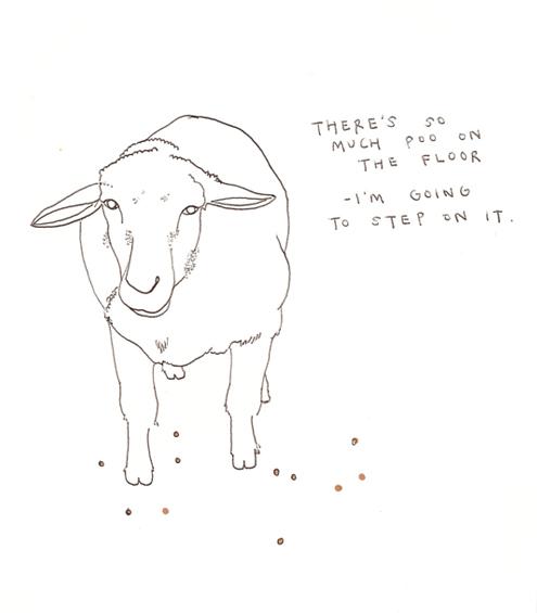 [sheepp]