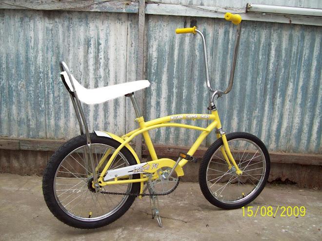 Bicicleta Estilo Vintage - Edicion Limitada DCC