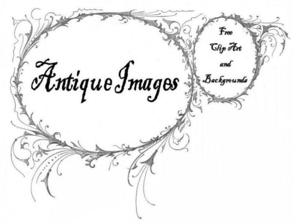 free clip art flowers black and white. Free Antique Clip Art: Black