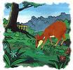 Kancil atau pelanduk, termasuk binatang pemakan sayuran terkecil