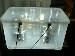 Progetto orchidea: illuminazione artificiale