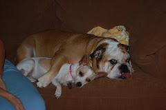Charlie & Phoebe