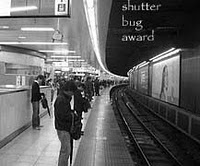 Shutter Bug Award