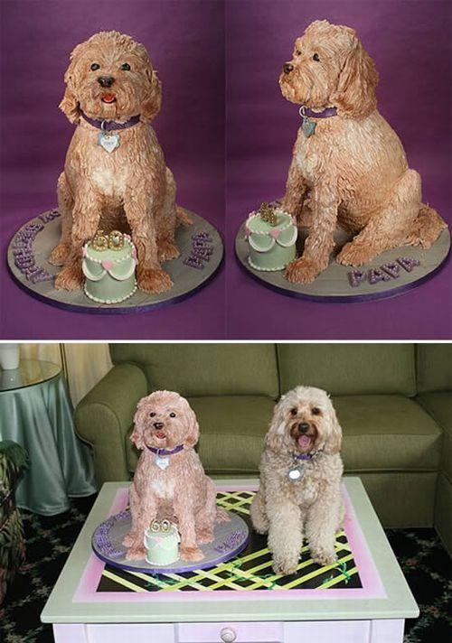 Dog Shaped Cake Images : Dog shaped cakes - 12 Pics Curious, Funny Photos / Pictures