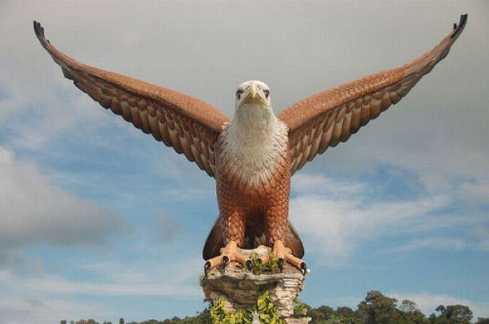 Фото самого крупного орла