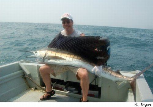 how to catch big fish ffxv