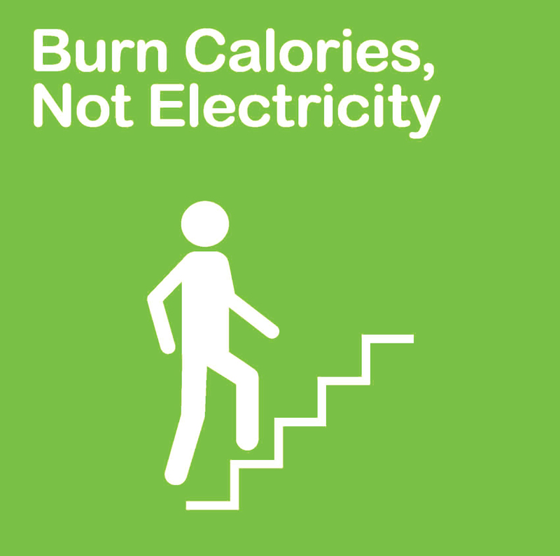 Burn More Calories Not Runnning: Fats About It: One Should Eat To Live, Not Live To Eat