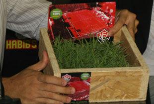 Kit gramado do Barradão