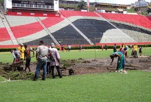 Reforma gramado Barradão