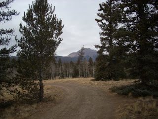 Trail Running on Forest Service Road off Trout Creek Pass