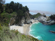McWay Falls Julia Pfeiffer Burns State Park