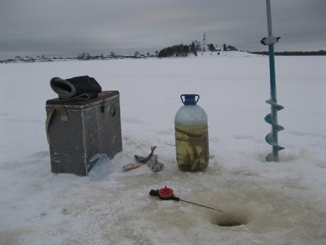 Как наловить и сохранить живца зимой холодной воде очень длительное время