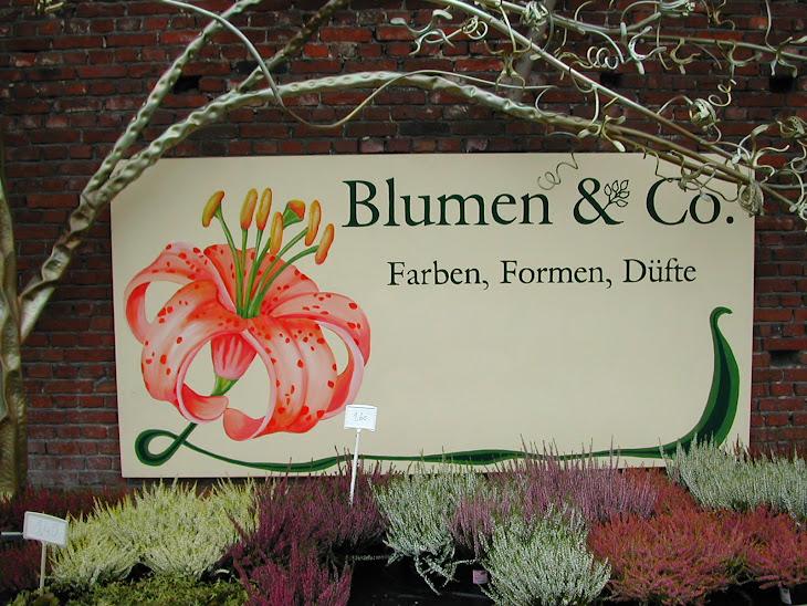 Blumen & co