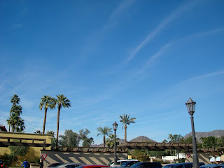 Skyline of Scottsdale with palm trees