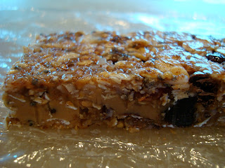 Finished No-Bake Vegan Peanut Butter Chocolate Chip Coconut Oil Protein Bars