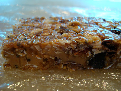Close up of side of one No-Bake Vegan Peanut Butter Chocolate Chip Coconut Oil Protein Bar