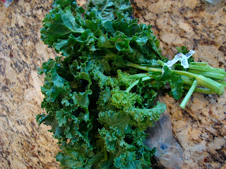 Bunch of kale on countertop