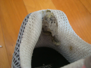 Back of inside sneaker showing holes from running