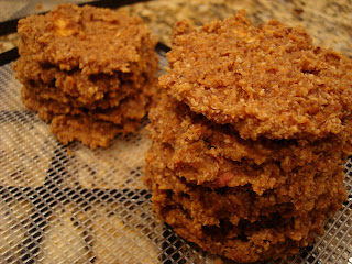 Stacks of Raw Vegan Apple Carrot (Pan)Cakes on dehydrator tray