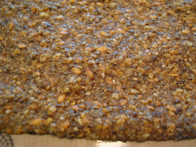 Close up of Seeds Only Crackers mixture