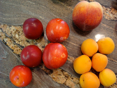 Plums, peach and nectarines