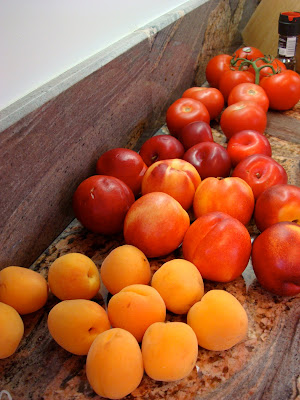 Side view of countertop filled with various fruits