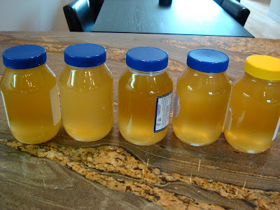 Five jars of Homemade Kombucha